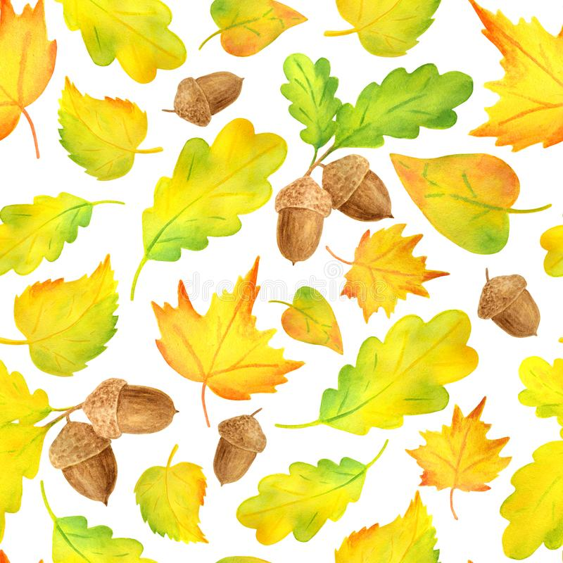 Watercolor colorful yellow autumn leaves seamless pattern. Hand drawn illustration with acorn, maple, alder, oak leaf on vector illustration