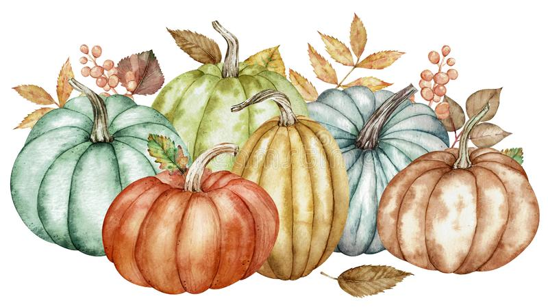 Watercolor composition of colorful pumpkins and autumn leaves. Botanical illustration. royalty free illustration