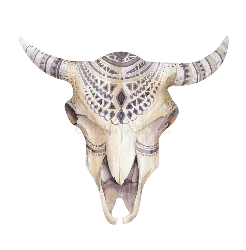Watercolor Cow Skull With Flowers And Feathers Boho Tribal Styl