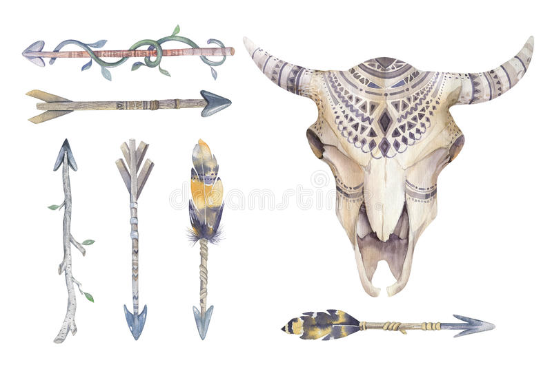 Watercolor cow skull with flowers and feathers. Boho tribal style bull design. American indians bison head. buffalo illustration. Watercolor cow skull with royalty free illustration