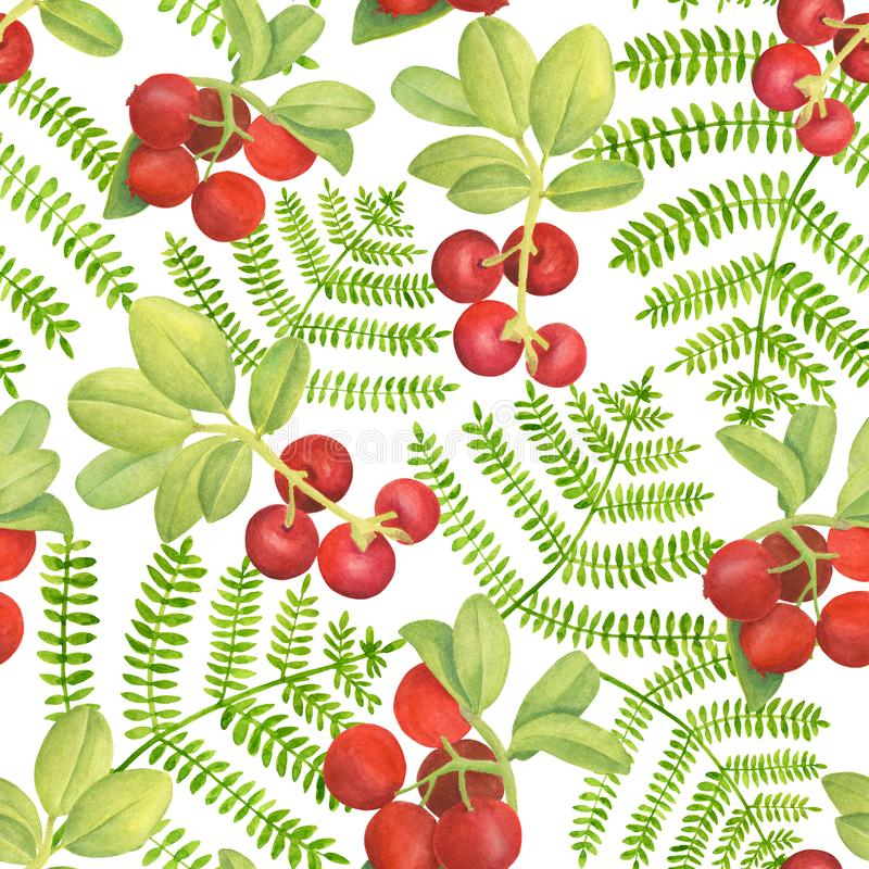 Watercolor cowberry and fern seamless pattern. Hand drawn branches with red berries and leaves on white background. Forest plants for design, cards vector illustration