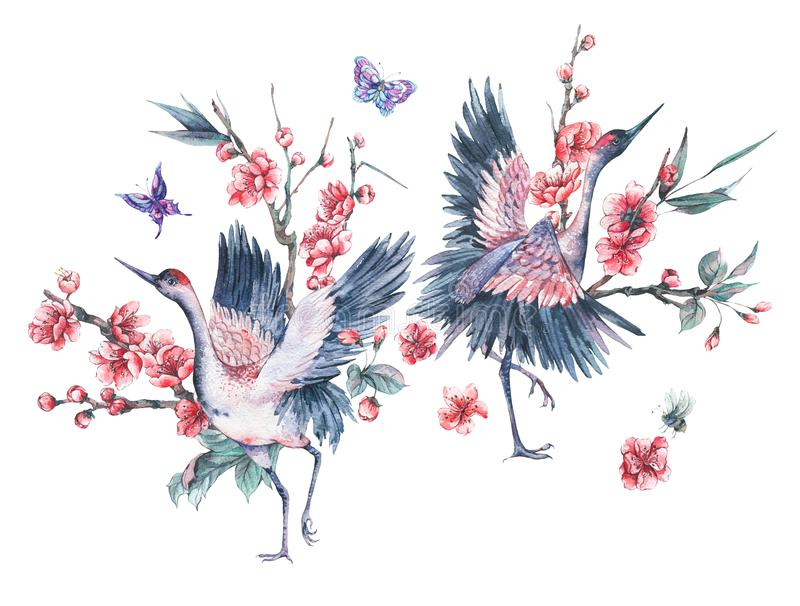 Watercolor crane and blooming branches of cherry royalty free illustration