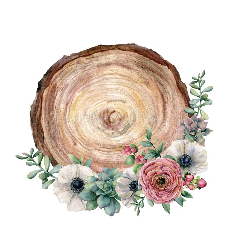 Watercolor cross section of a tree with flower bouquet. Hand painted anemone, ranunculus, eucaliptus leaves and stock illustration