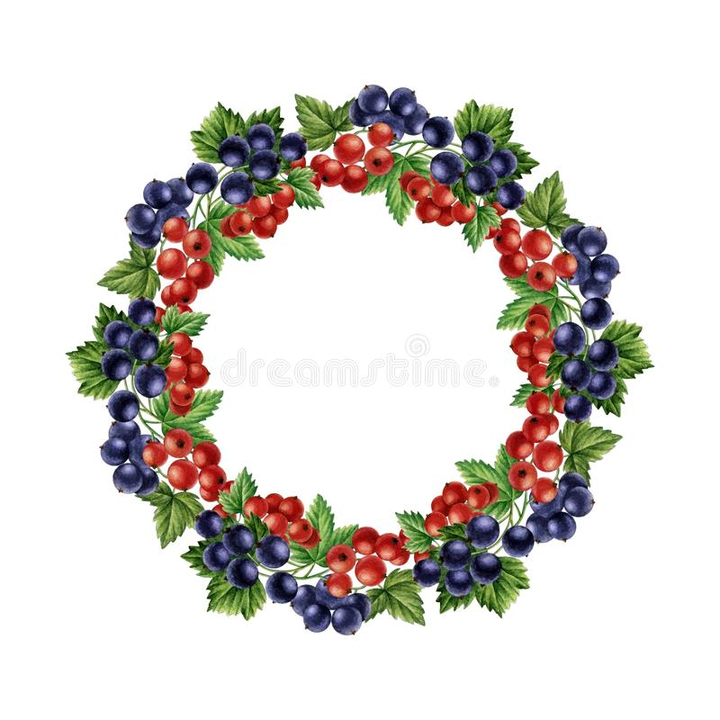 Watercolor currants round frame. stock photo