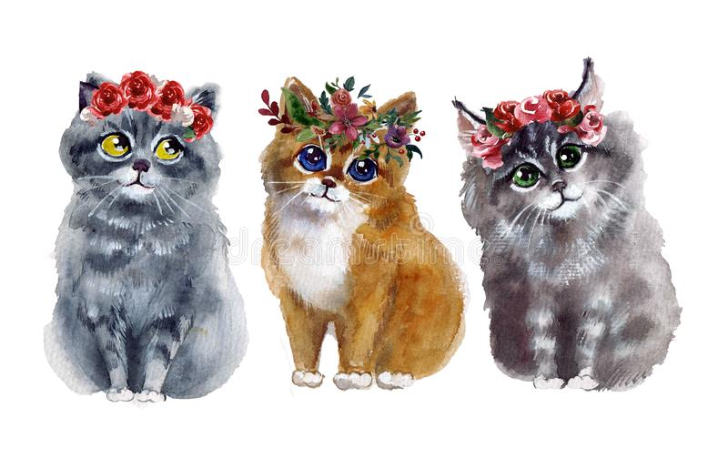 Watercolor cute cats with flowers on the white background. Watercolor cute cats. Pets illustrations. Funny illustartion on the white background. animals vector illustration
