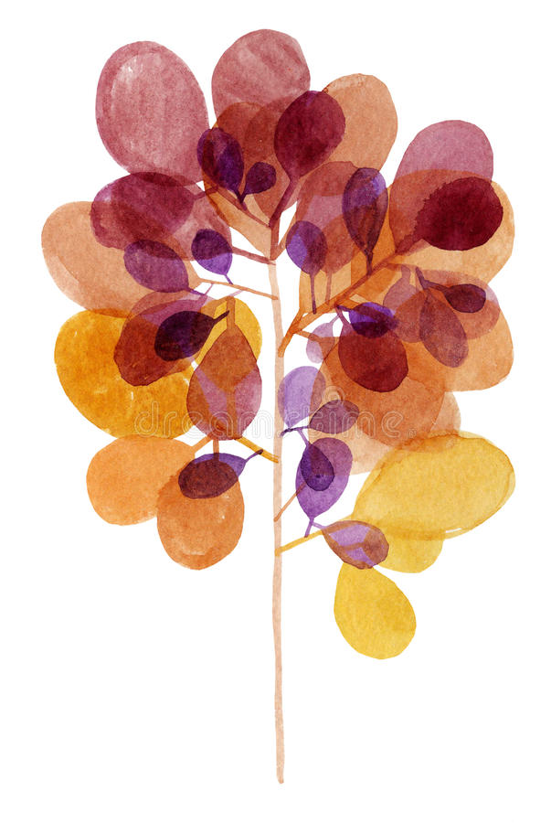Watercolor decorative brown orange branch royalty free stock photos