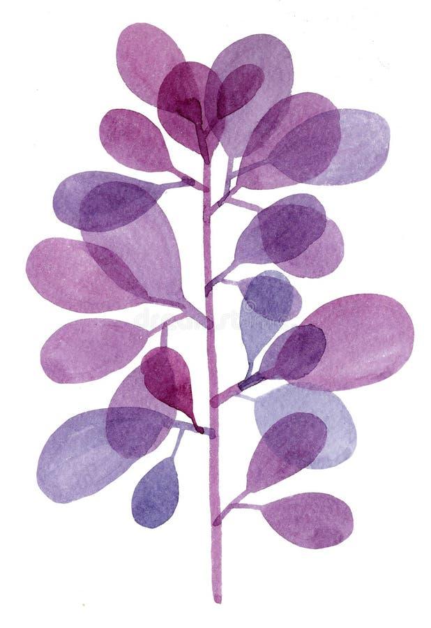Watercolor decorative purple branch royalty free stock image