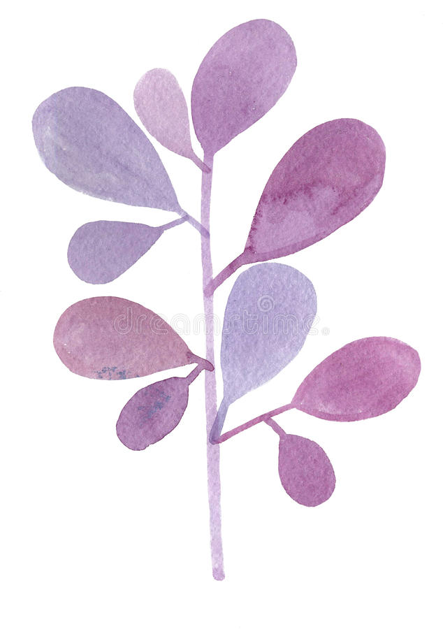 Watercolor decorative purple branch royalty free stock images