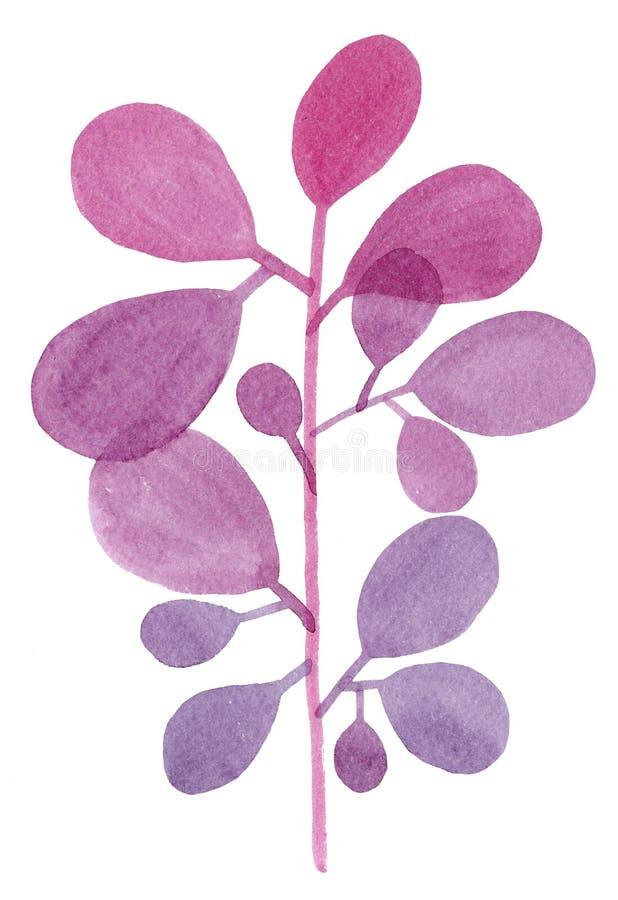 Watercolor decorative purple branch royalty free stock photos