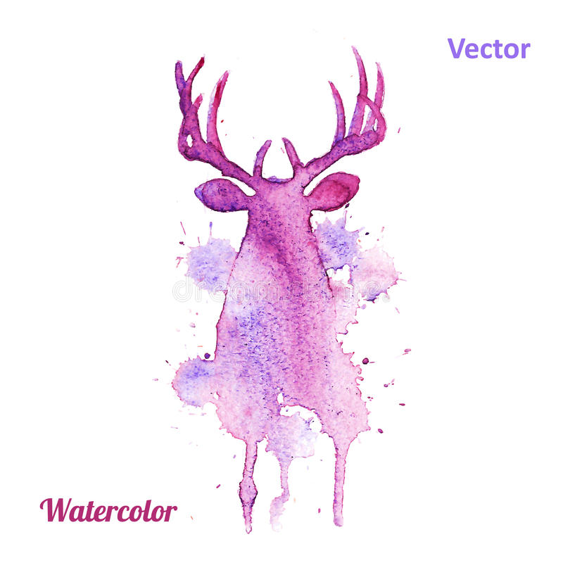 Watercolor deer head Vector on the white royalty free illustration