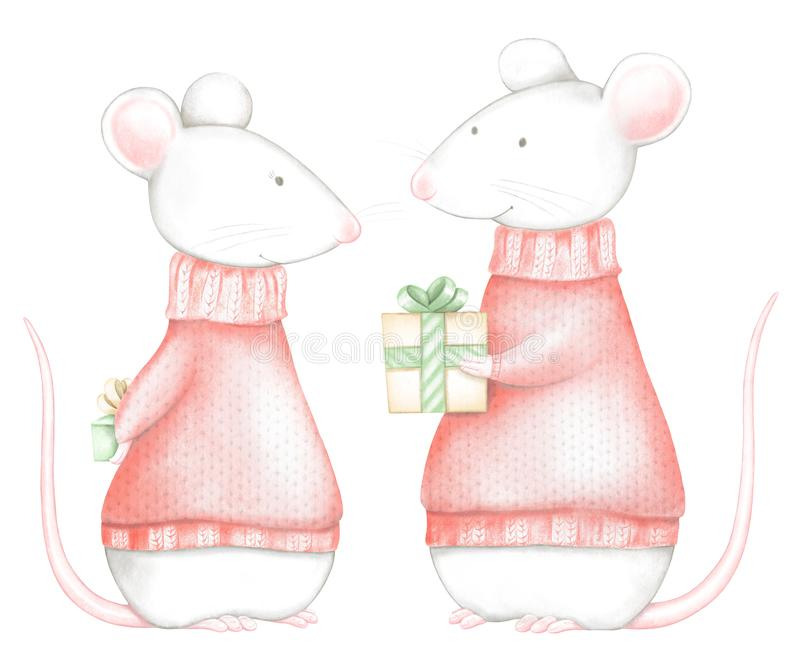 Watercolor and digital graphic couple of two white mice in red Christmas sweaters with difts boxes vector illustration