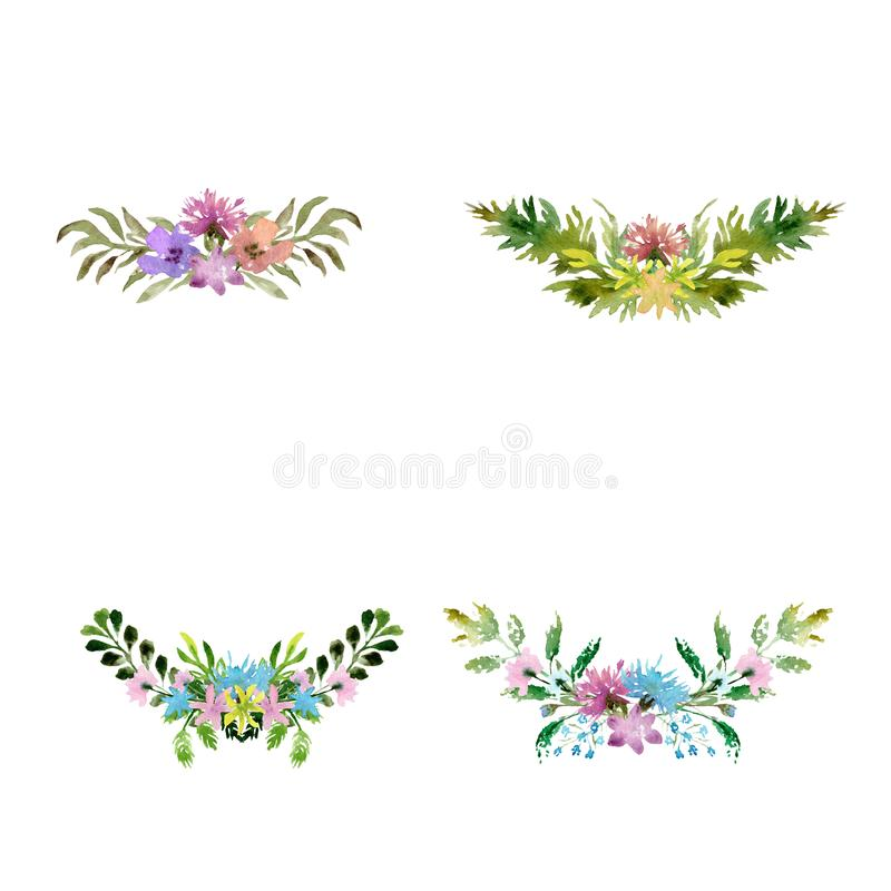 Watercolor drawing composition of field plants, flowers and herbs vector illustration
