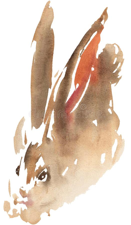 Watercolor drawing, illustration. Red-haired rabbit, hare. stock photography