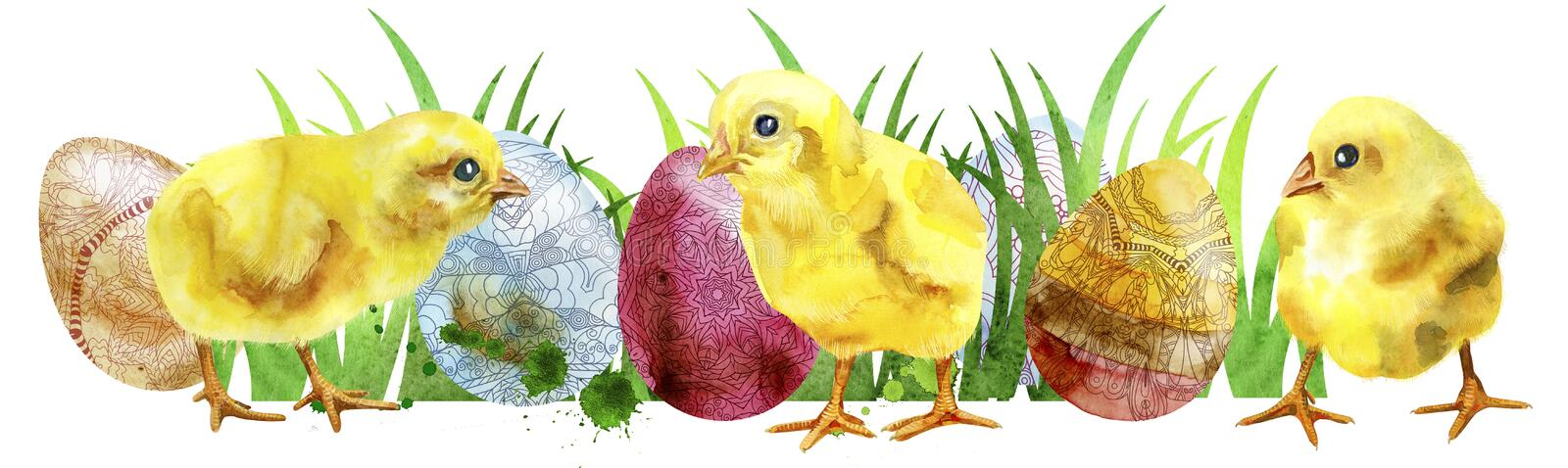 Watercolor Easter colored eggs and chickens. royalty free illustration