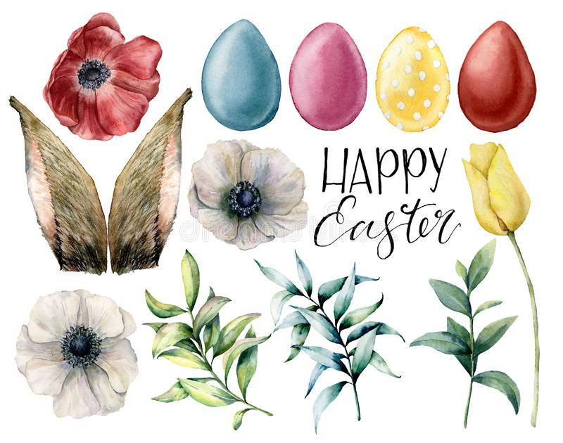 Watercolor easter rabbit ears, flowers and eggs set. Holiday collection with eucalyptus branch, anemone, tulip and. Colored eggs isolated on white background stock illustration