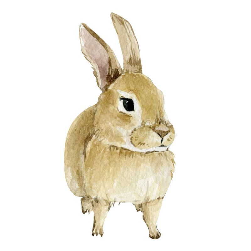 Watercolor Easter rabbit. Hand drawn clipart animal forest. Watercolor painting funny bunny. Baby animal royalty free illustration
