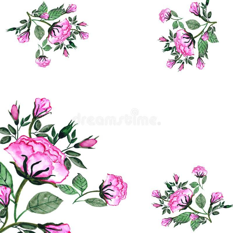 watercolor Ein Blumenstrauß von Rosen und von Knospen in einem quadratischen Rahmen Einladungskarte f?r die Heirat, Geburtstag un vektor abbildung