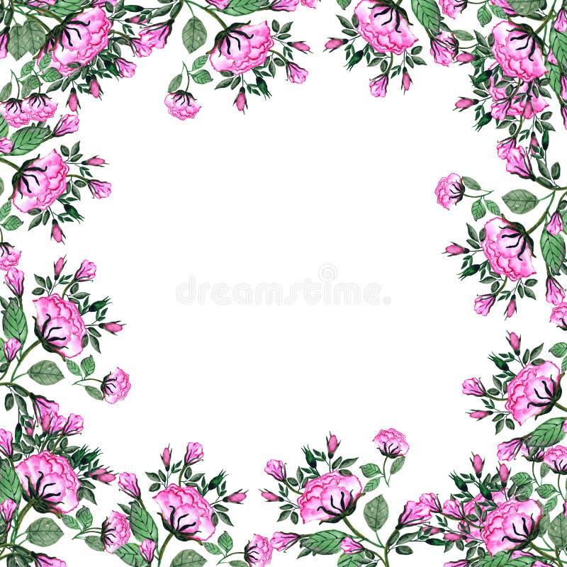 watercolor Ein Blumenstrauß von Rosen und von Knospen in einem quadratischen Rahmen Einladungskarte f?r die Heirat, Geburtstag un lizenzfreie abbildung