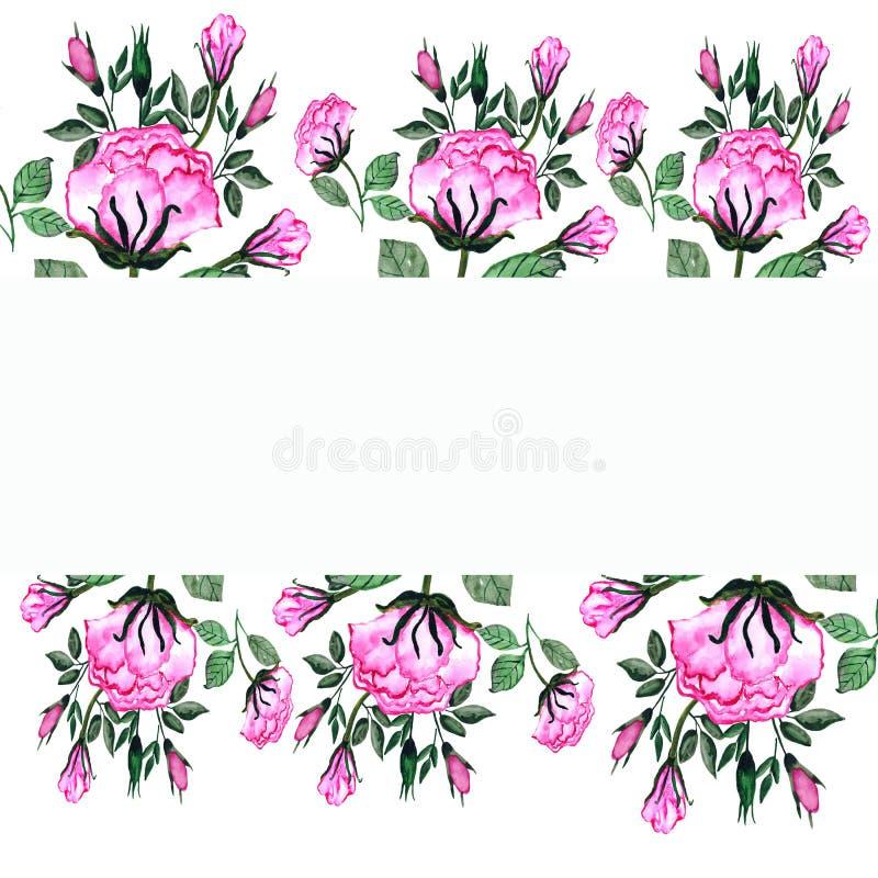 watercolor Ein Blumenstrauß von Rosen und von Knospen in einem rechteckigen Rahmen Einladungskarte f?r die Heirat, Geburtstag und lizenzfreie abbildung