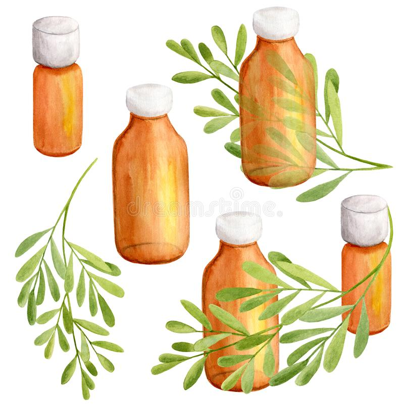 Watercolor essential oil dark glass bottles with green eucalyptus branches. Hand drawn aroma spa elements on white background for royalty free stock photo