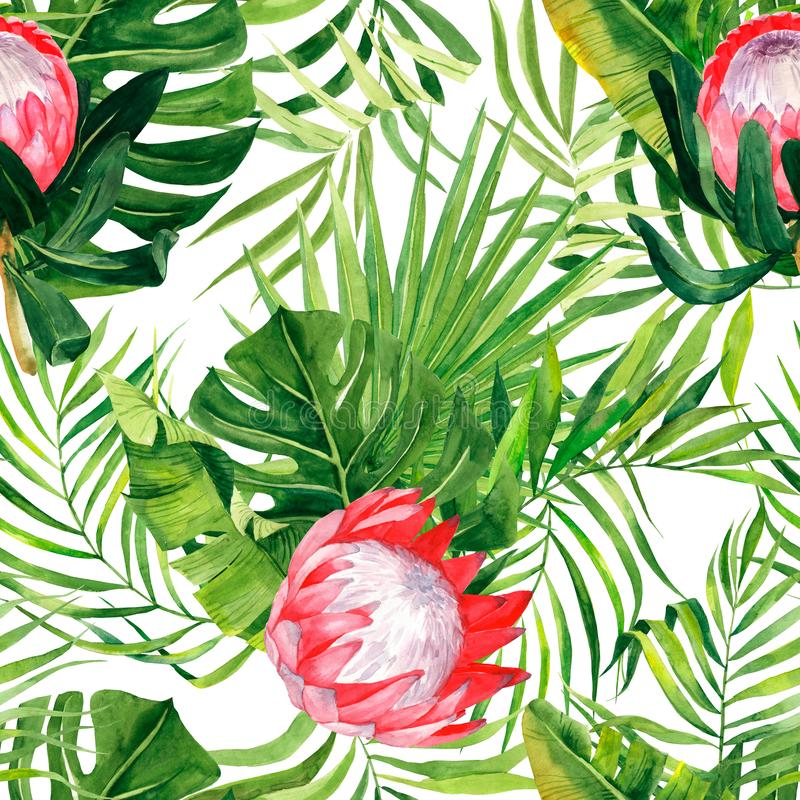 Watercolor exzotic print, leaves palm and protea flowers. Pattern with tropical plants isolated on white background may be used as. Background texture, wrapping stock illustration