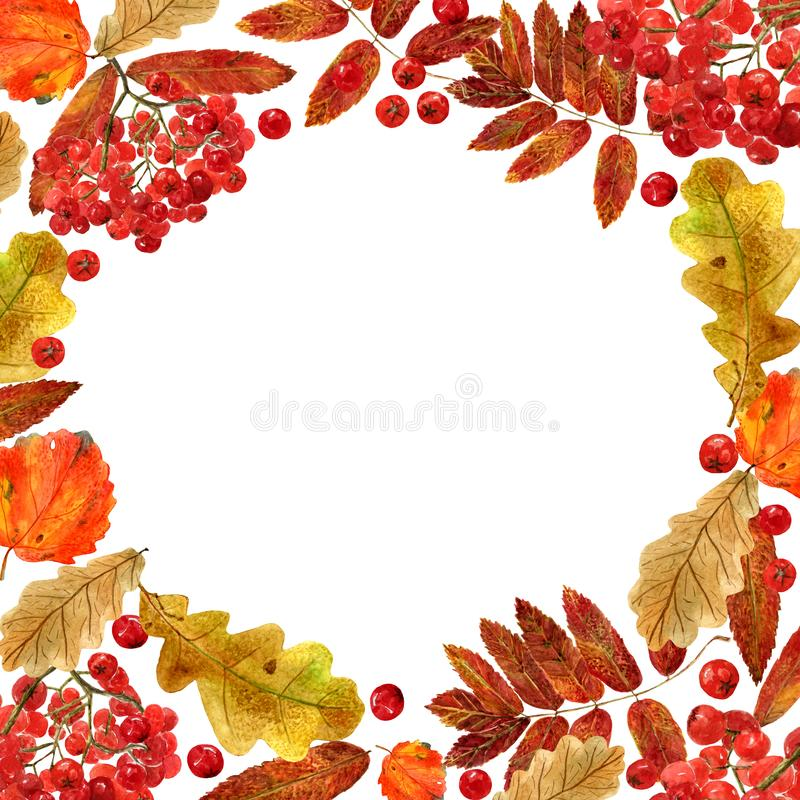 Watercolor fall frame. Background with autumn foliage of oak, aspen, rowan and berries, and place for text. Design for wedding, invitations or cards vector illustration