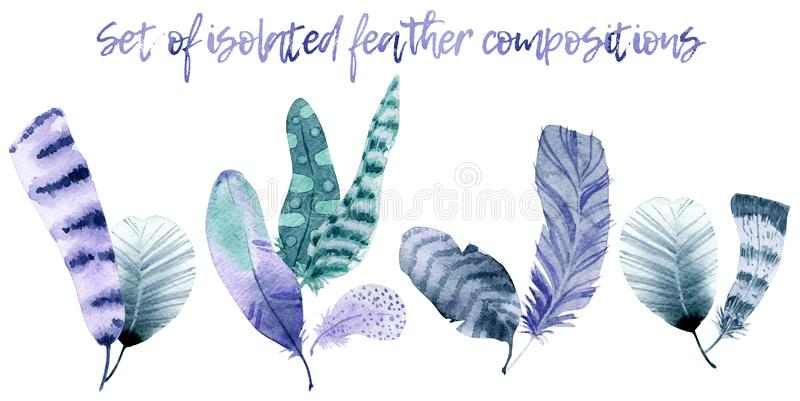 Watercolor feather compositions stock photos