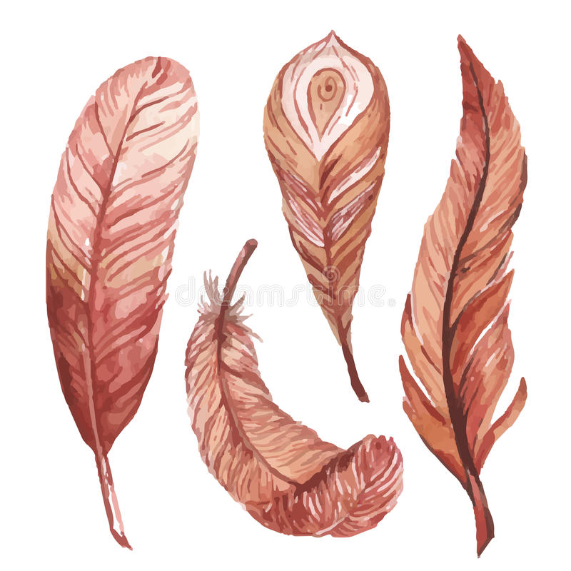 Watercolor feathers stock illustration