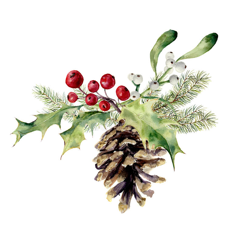 Free Watercolor Fir Cone With Christmas Decor. Pine Cone With Christmas Tree Branch, Holly And Mistletoe On White Background Stock Photo - 79884550