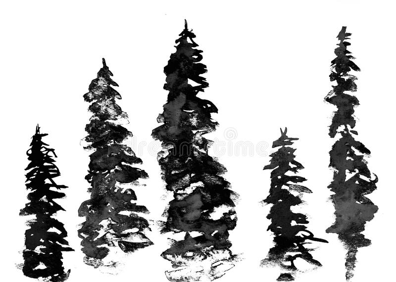 Watercolor fir-tree. On a white background vector illustration