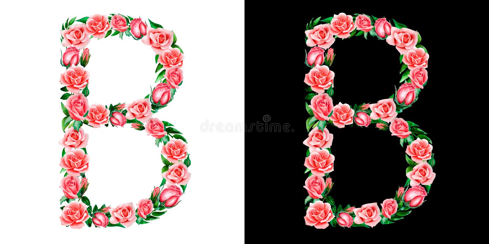 Watercolor floral alphabet of roses, Monogram, title letter B isolated on black and white background. Watercolor floral alphabet of roses, Monogram, title stock photos