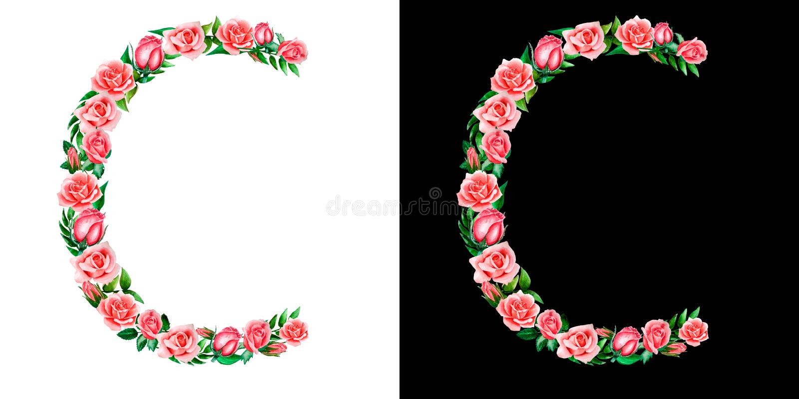 Watercolor floral alphabet of roses, Monogram, title letter C isolated on black and white background. Watercolor floral alphabet of roses, Monogram, title stock images