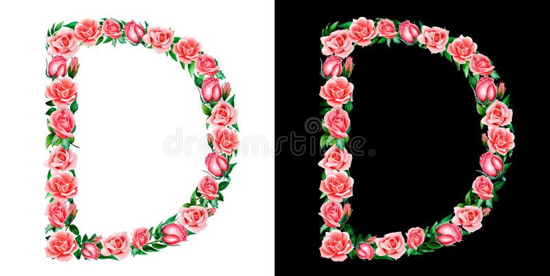 Watercolor floral alphabet of roses, Monogram, title letter D isolated on black and white background. Watercolor floral alphabet of roses, Monogram, title royalty free stock image