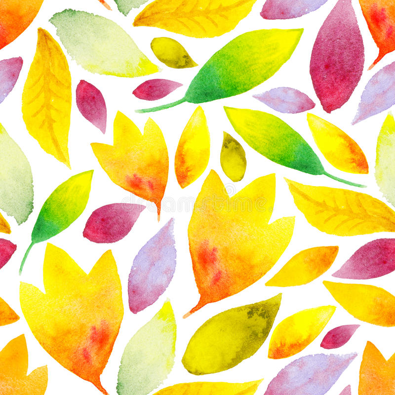 Watercolor floral background with autumn leaves on a white stock illustration