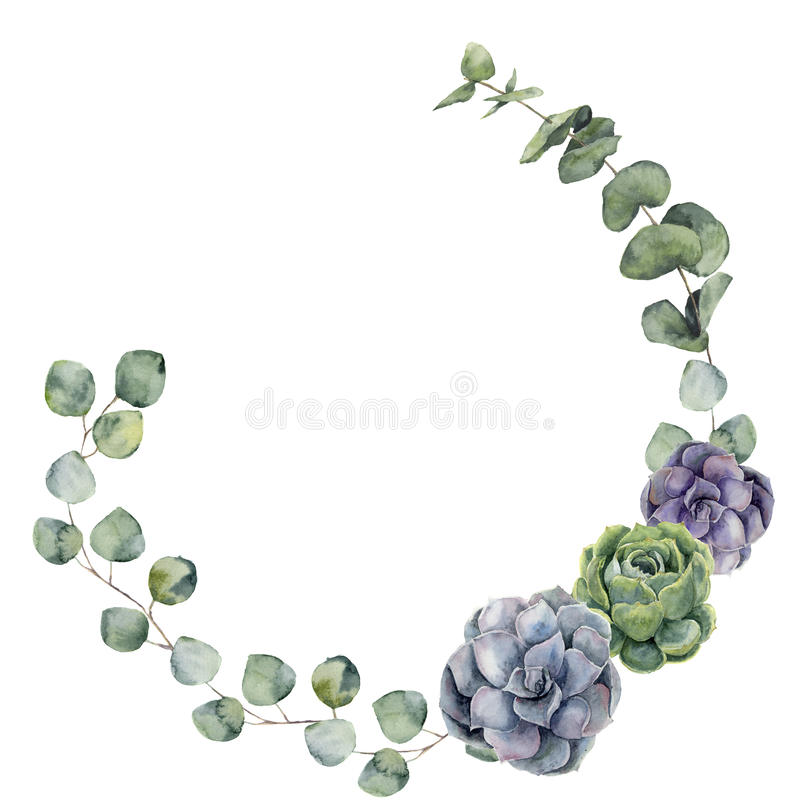 Watercolor floral border with baby, silver dollar eucalyptus leaves and succulent. Hand painted floral wreath with royalty free illustration