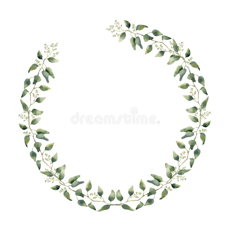 Watercolor floral border with eucalyptus leaves and flowers. Hand painted floral wreath with branches, leaves of eucalyptus. Isolated on white background. For vector illustration