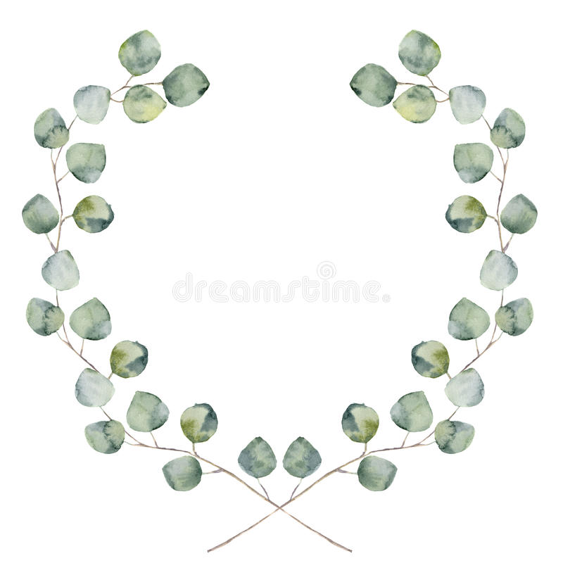 Free Watercolor Floral Border With Baby And Silver Dollar Eucalyptus Leaves. Stock Photography - 75312792