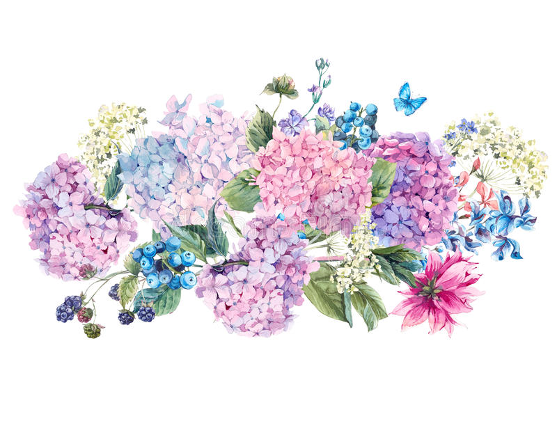 Watercolor Floral bouquet with Hydrangea royalty free illustration