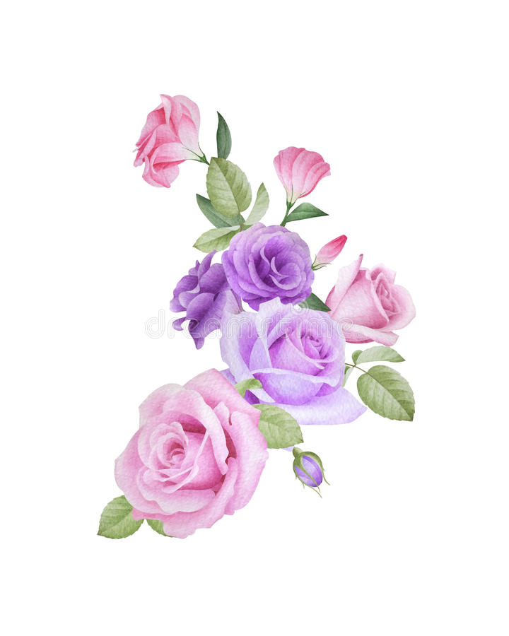 Watercolor floral bouquet of roses and lisianthus stock photos