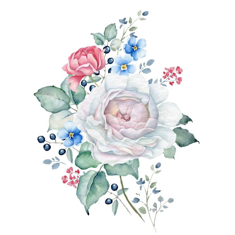Watercolor Floral Bouquet with White and Pink Roses, Forget-me-not Flowers. Hand drawn watercolor floral bouquet isolated on white background. White, pink roses royalty free illustration