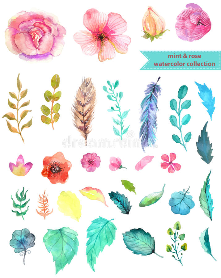 Watercolor floral collection royalty free illustration