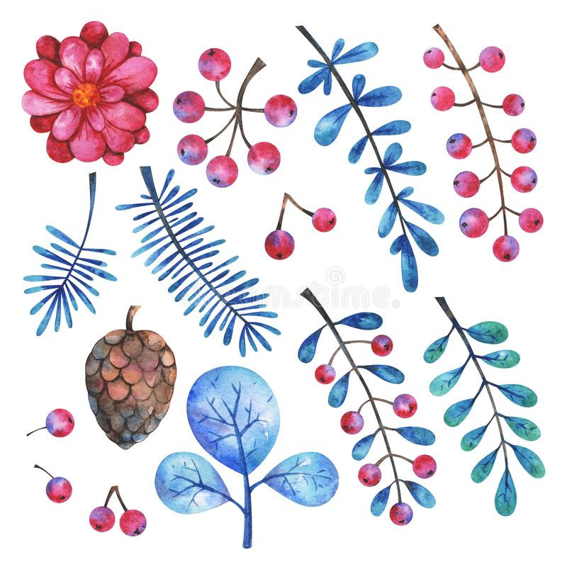 Watercolor floral elements set. Hand painted branches, flowers, plants and berries stock illustration