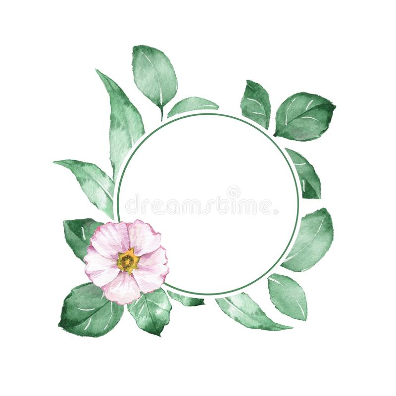Watercolor floral frame. Background with white flower royalty free illustration