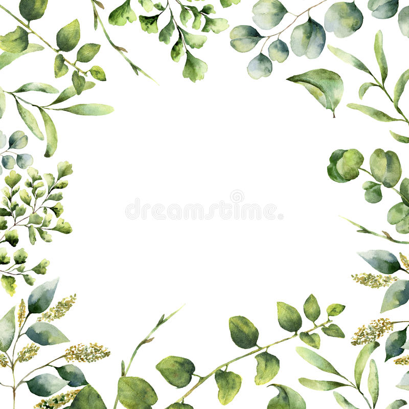 Watercolor floral frame. Hand painted plant card with eucalyptus, fern and spring greenery branches isolated on white royalty free illustration