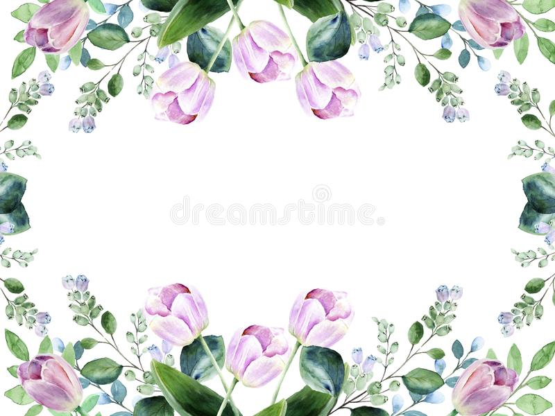 Watercolor floral frame with pink tulips and blooming snowberry royalty free stock images
