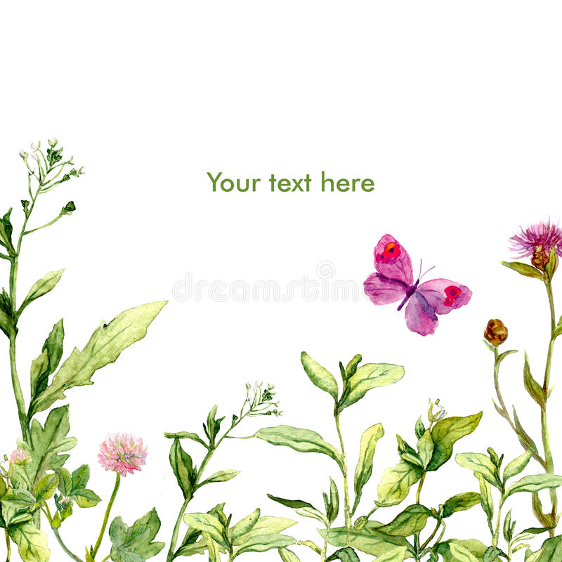 Watercolor floral greeting card with meadow grass and butterfly royalty free illustration
