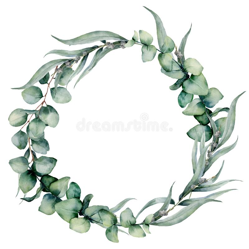 Watercolor floral wreath with different eucalyptus leaves. Hand painted wreath with baby blue, siver dollar eucalyptus stock illustration