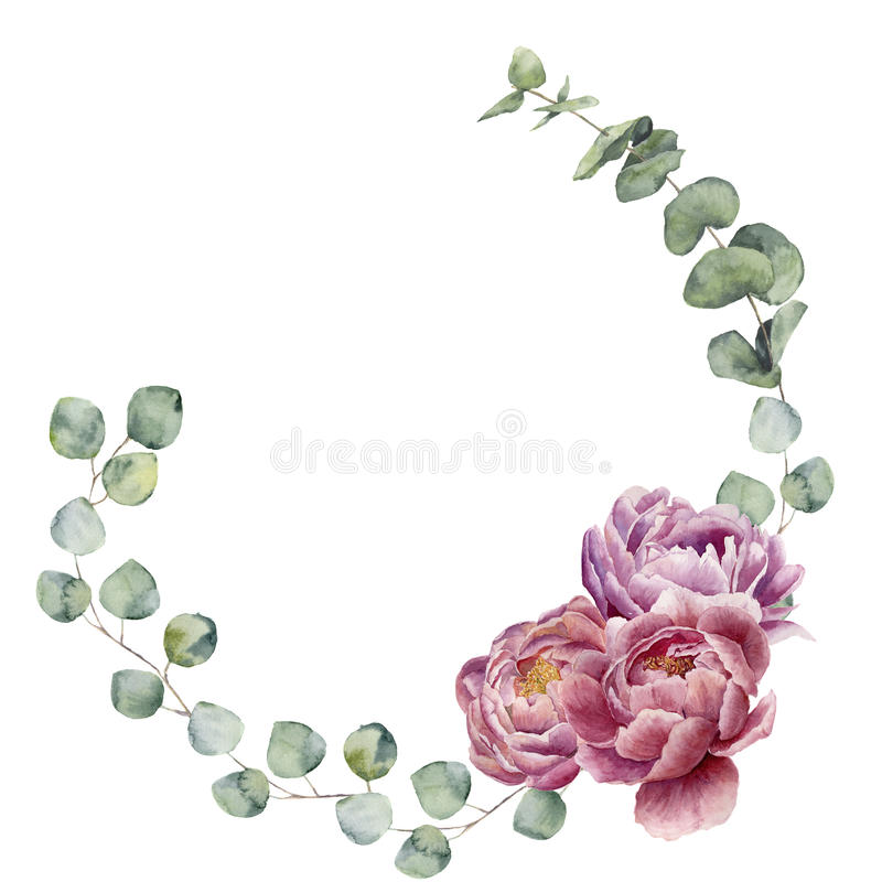 Watercolor floral wreath with eucalyptus leaves and peony flowers. Hand painted floral border with branches, leaves of eucalyptus. And flowers isolated on white