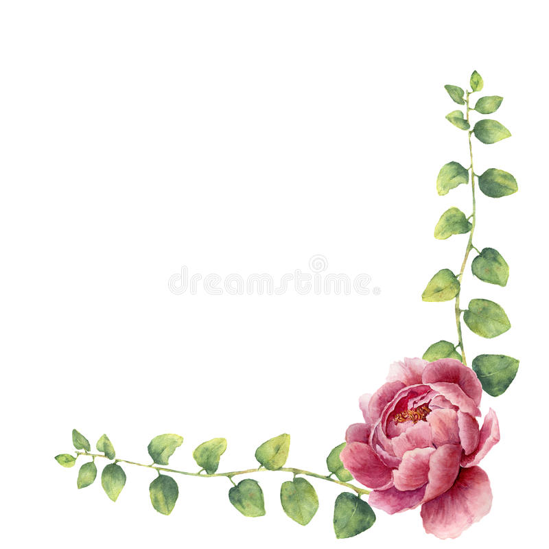 Watercolor floral wreath with leaves of twig herb and peony flowers. Hand painted floral border with branches, leaves of stock illustration