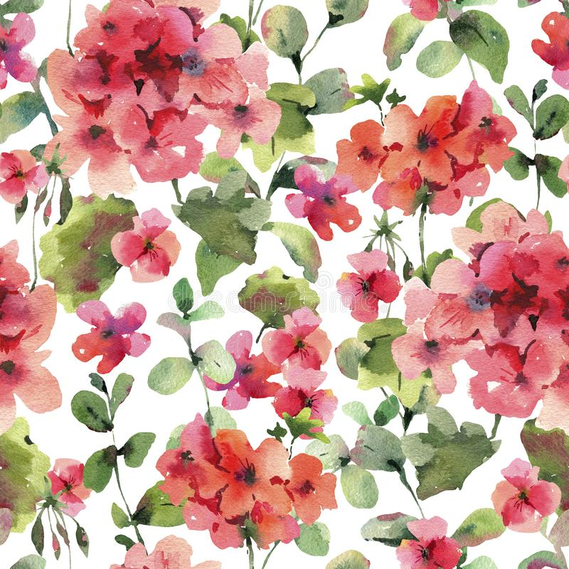 Watercolor Flower Geranium Seamess Pattern, Pelargonium Texture, Red Flowers. Natural Summer IIllustration on White Background vector illustration